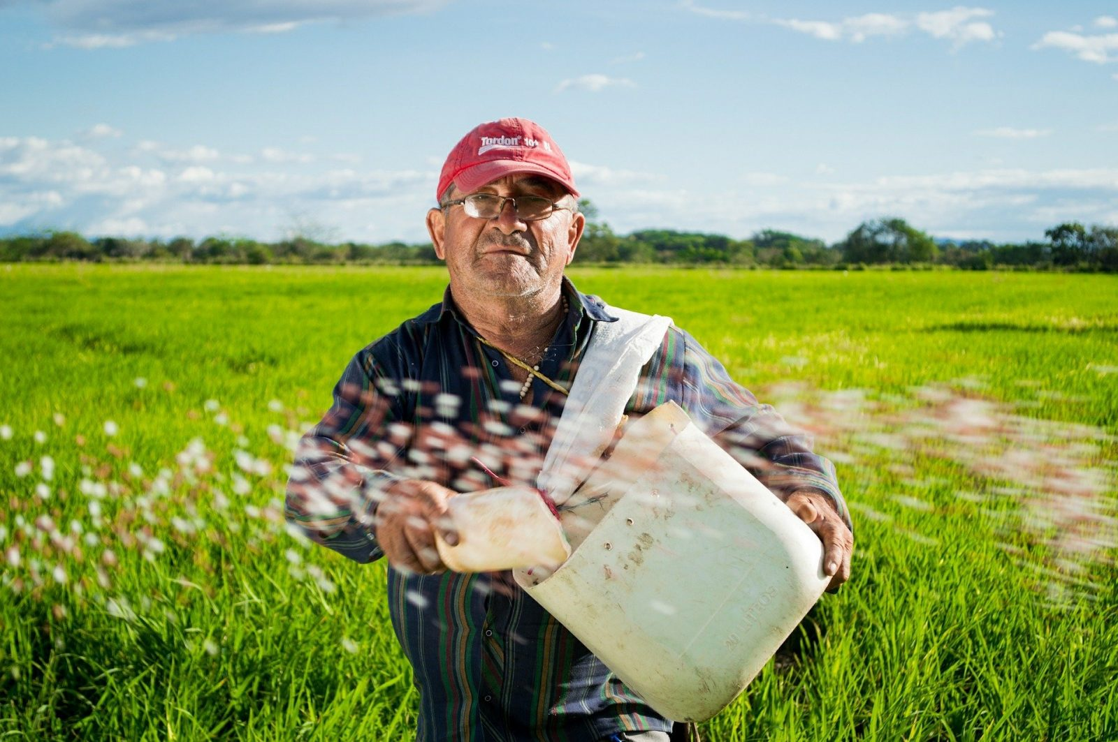 Powszechny spis rolny